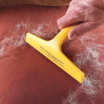 10 Unusual Ways to Clean Everything