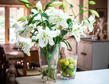 10 Ways to Make Your Home Smell Amazing8