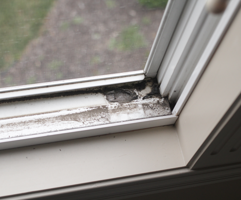Clean Your Window Tracks, How to Clean Your Window Tracks, Easy Ways to Clean Your Window Tracks, How to Easily Clean Your Window Tracks, Window Track Cleaning Tips, Cleaning, Cleaning Tips and Tricks, Cleaning Hacks, Clean Everything, Clean Home, Popular Pin
