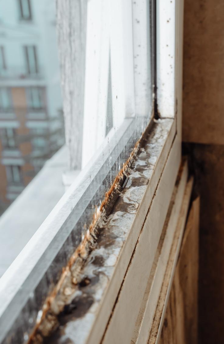 Clean Window Tracks