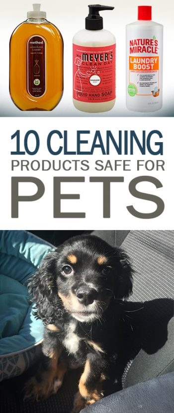 Cleaning Products Safe for Pets, Cleaning Tips and Tricks, Cleaning With Pets, How to Keep Your Home Clean With Pets, Cleaning 101, Clean Home Tips