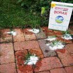 How to Use Borax In Your Home, Simple Ways to Use Borax In Your Home, Home Hacks, Borax Hacks, Uses for Borax, Cool Things to Do With Borax, Popular Pin