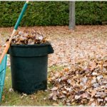 Painless Ways to Rake Leaves - 101 Days of Organization| Rake Leaves, Raking Leaf Tips, Yard Clean Up, Yard Clean Up Tips, Yard Organization #YardCleanUp #YardCleanUpTips #Gardening
