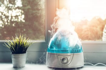 Dusty   Dust   Dusting Tips and Tricks   Dusting Hacks   Cleaning Hacks   Cleaning Tips and Tricks   Cleaning   Alternatives to Dusting   Dusting Alternatives