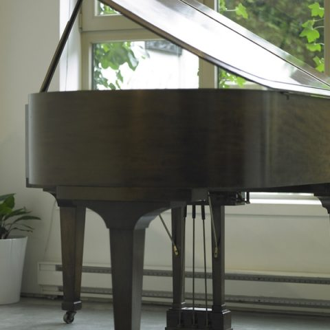 Grand Piano Free of Fingerprints
