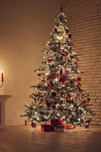 Is there anything better than a beautiful flocked Christmas tree? I don't think so! Here's how to flock a Christmas tree at home.
