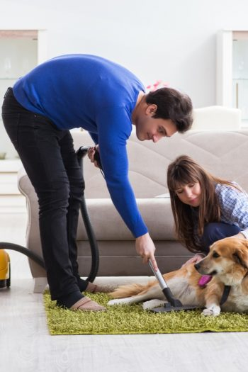 How do you feel about vacuuming? If you're like us, you actually love it. And you also love vacuuming hacks that make it easier! If you're a pet owner, you want to know these vacuuming tips!