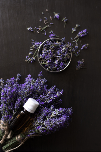 Deep sleep essential oil blends are one of the best ways to improve your quality of sleep without chemicals. Here are the blends to help improve your sleep. The smell of lavender will put you right to bed.